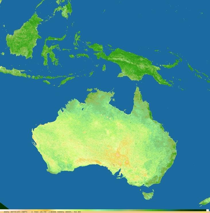 NDVI of New Guinea from Himawari